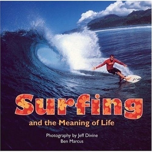 Surfing and the Meaning of Life Book
